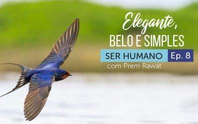 Ser Humano – Episódio 8 – Elegante, Belo e Simples
