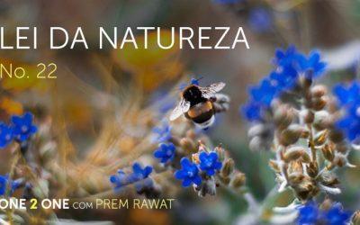 One 2 One com Prem Rawat – Lei da Natureza
